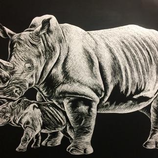 Rhino .jpg