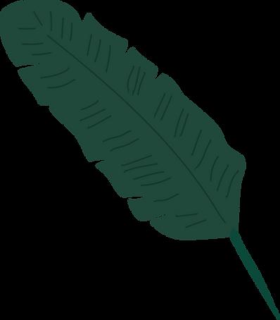 EN logofullAsset 2_3x-8.png