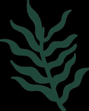 EN logofullAsset 1_3x-8.png