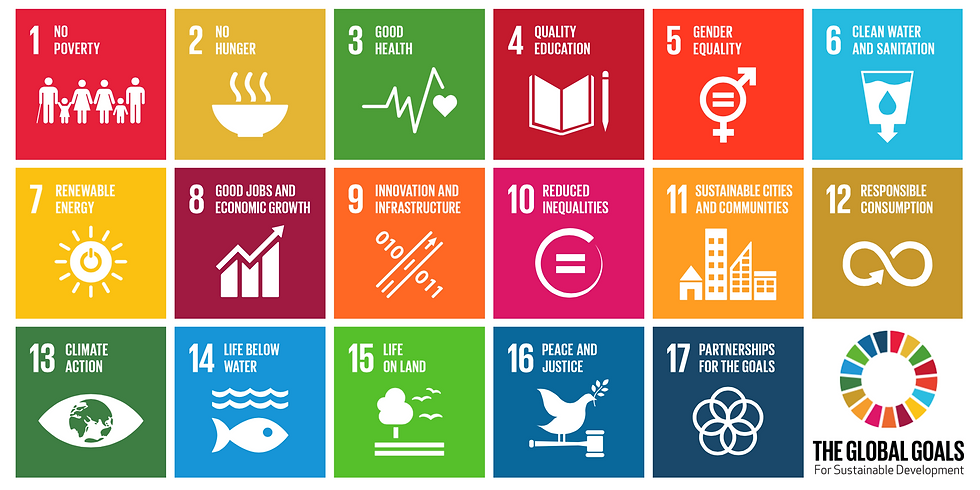 SDG Mapping Workshop