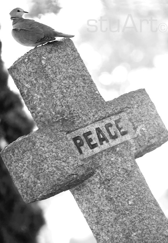 097 peace.jpg