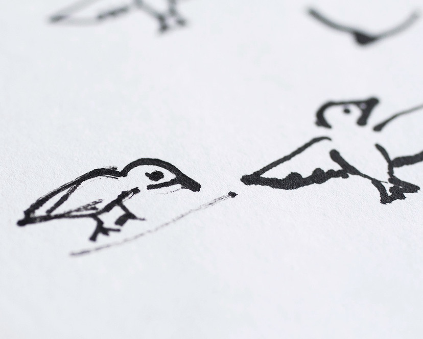 Indian ink illustrations