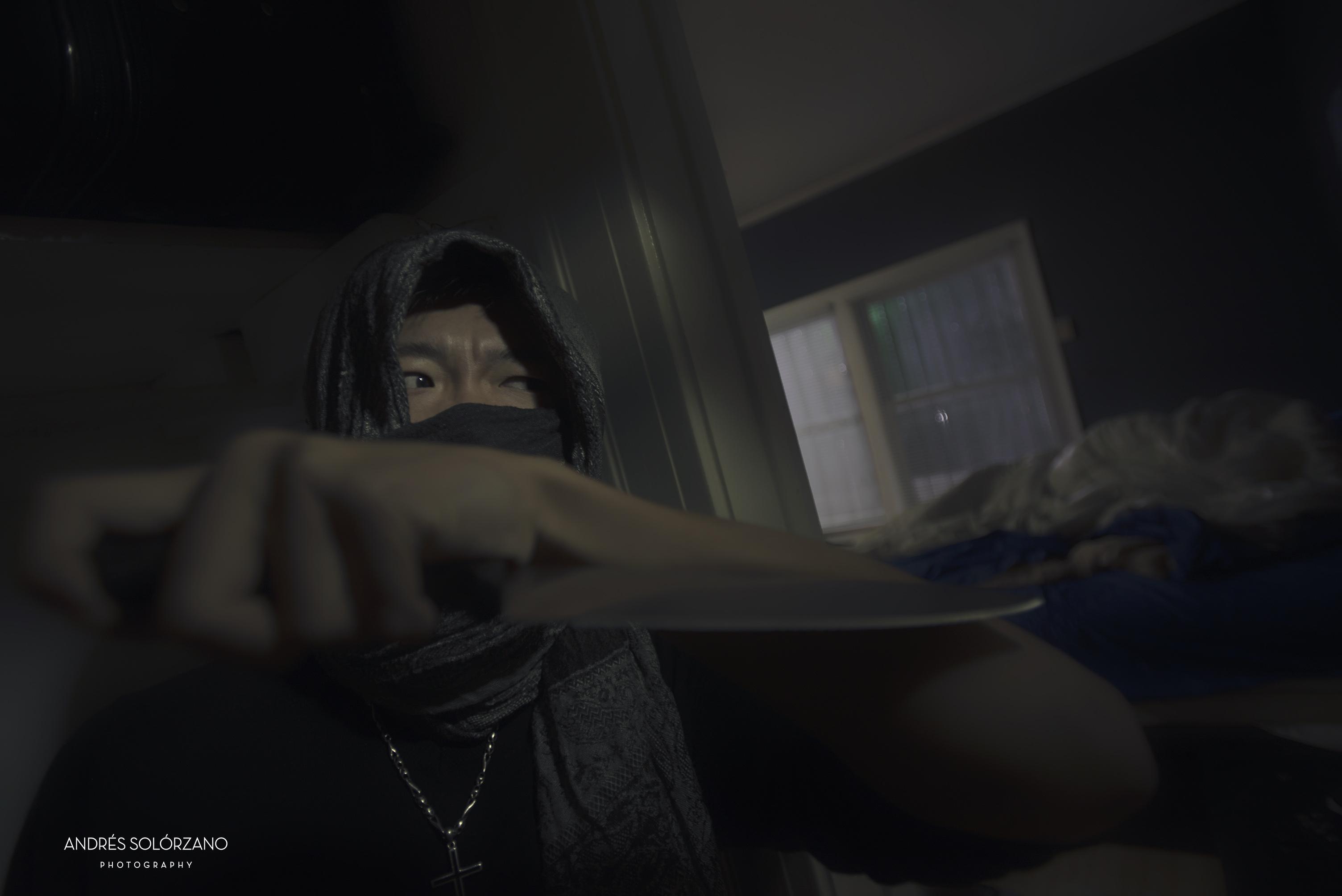 di-ninja