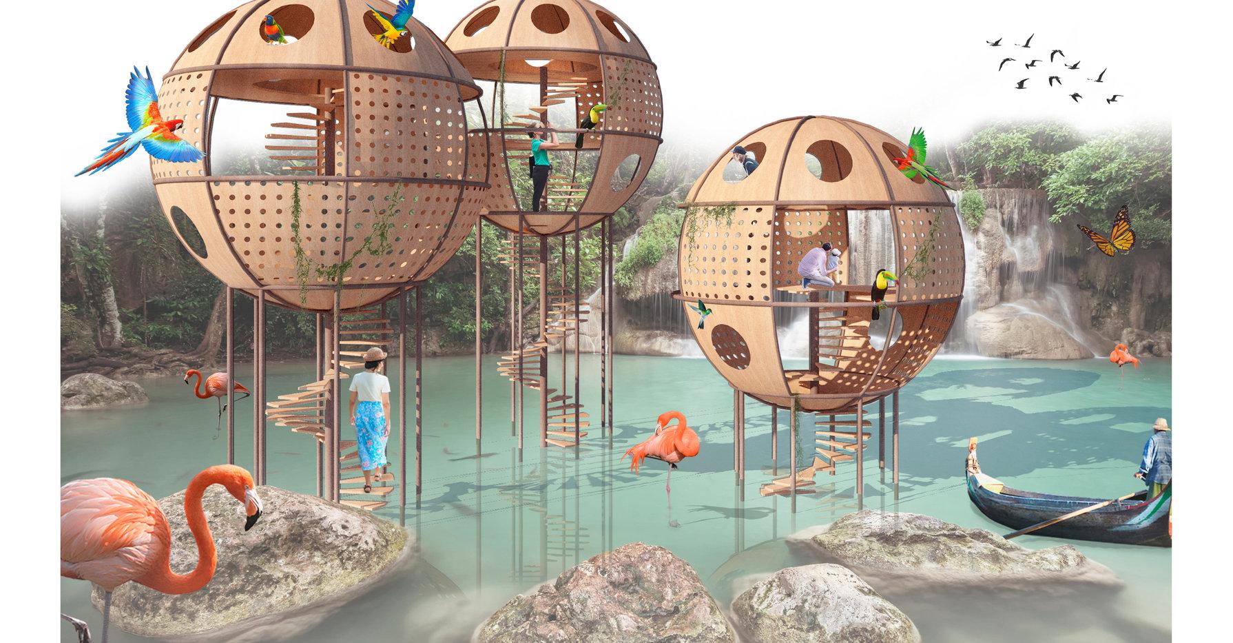 Bio-Bubbles 1
