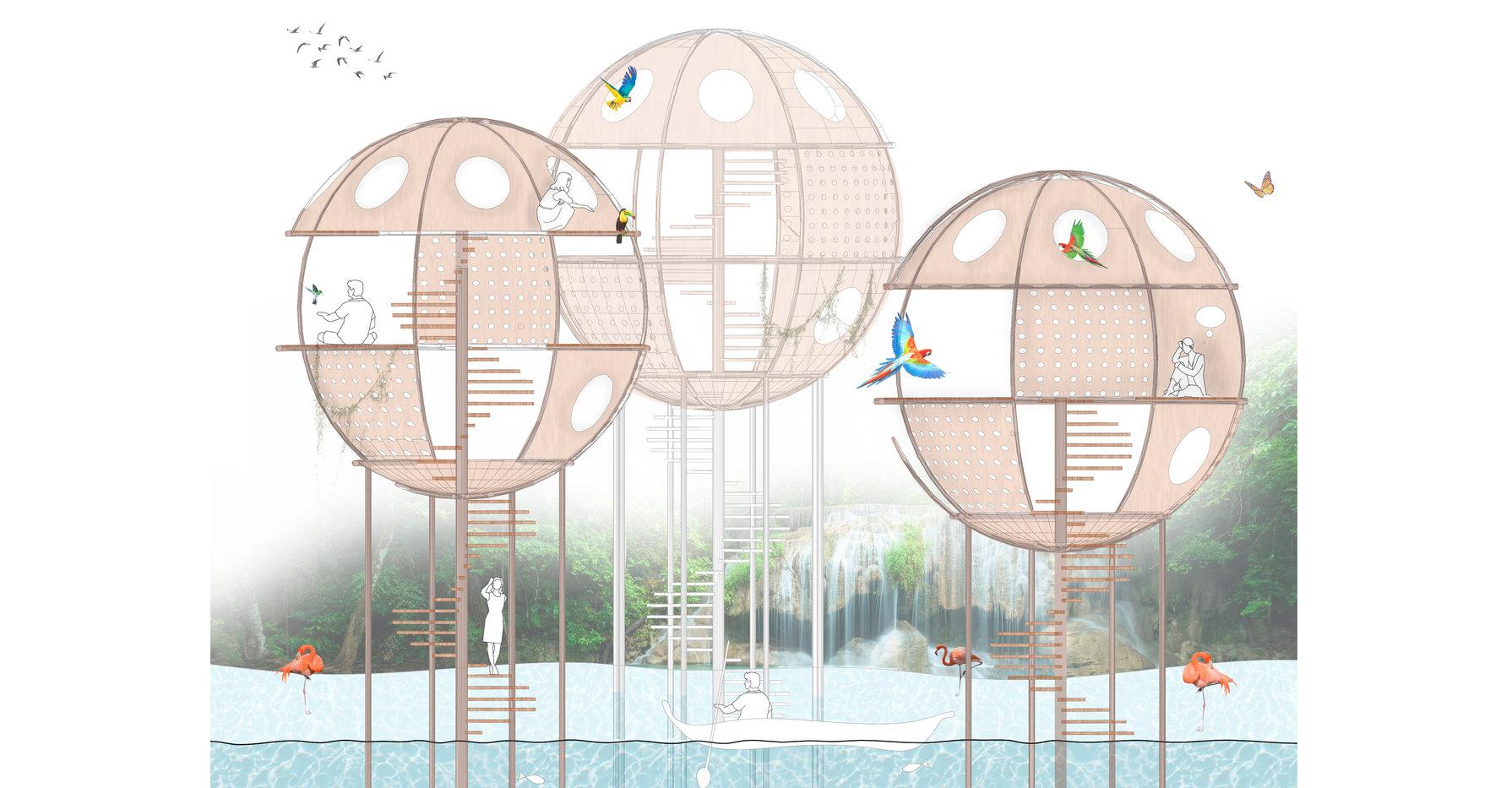 Bio-Bubbles 6