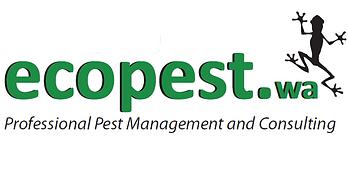 Termites in Perth