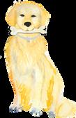 Dog with a Bone Coaching
