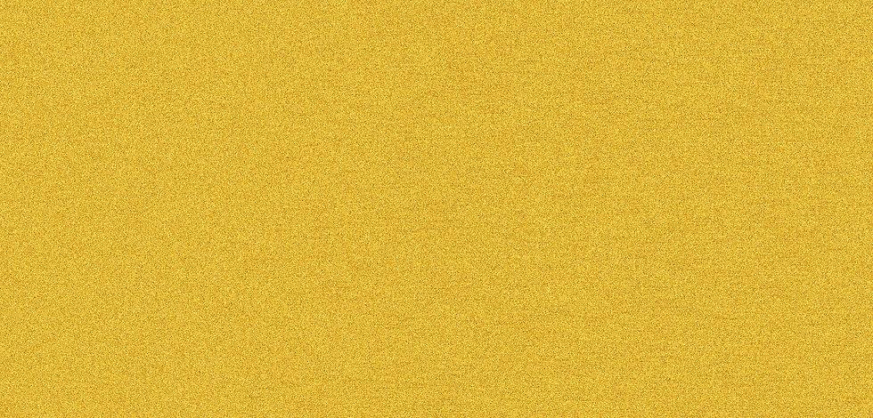 yellow-02 web.jpg