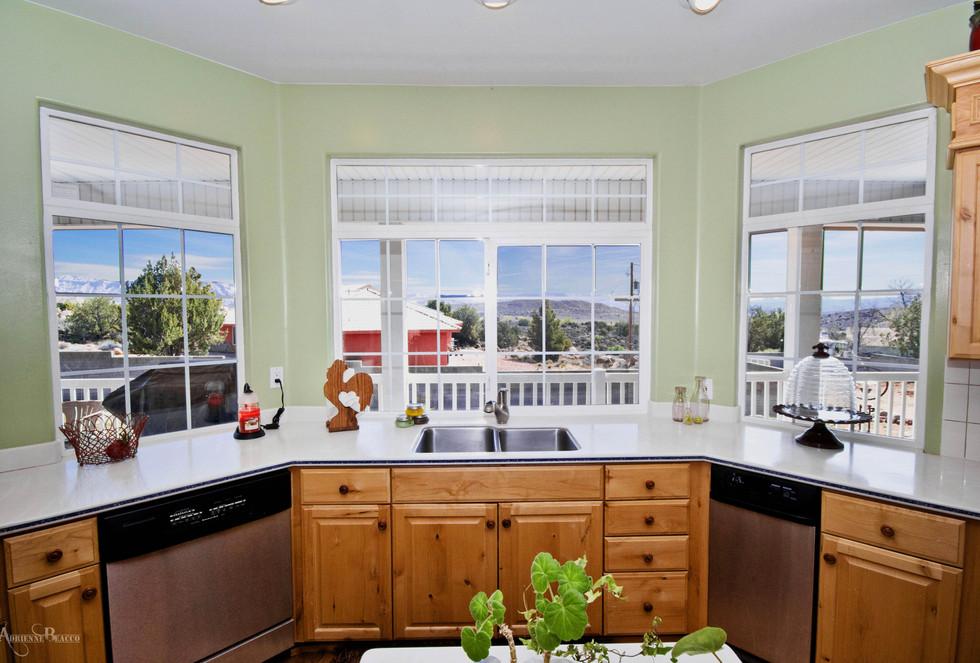 Kitchen Sink View.jpg