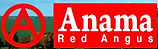 Anama Red Angus.jpg