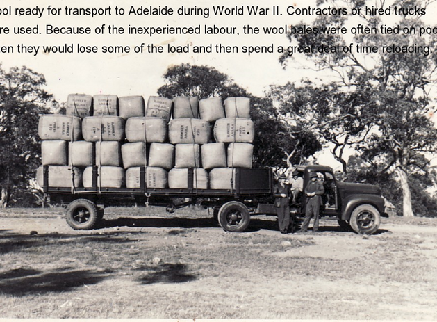 Truck load of Wool Picture47.png
