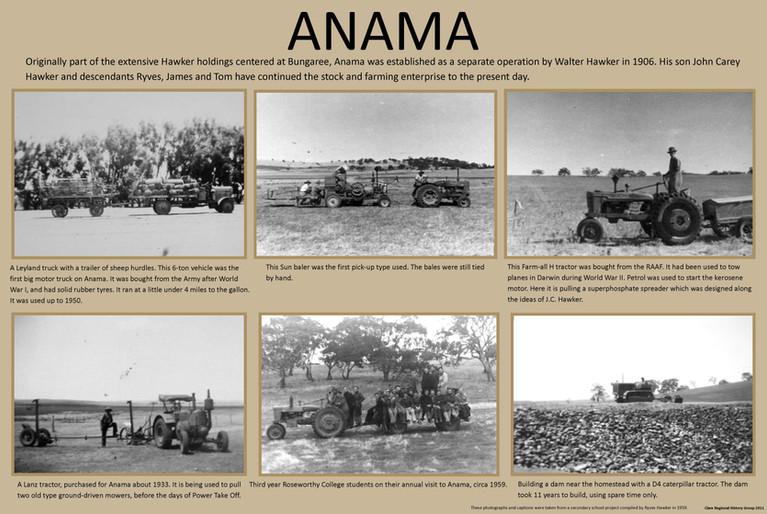 17. Anama Poster