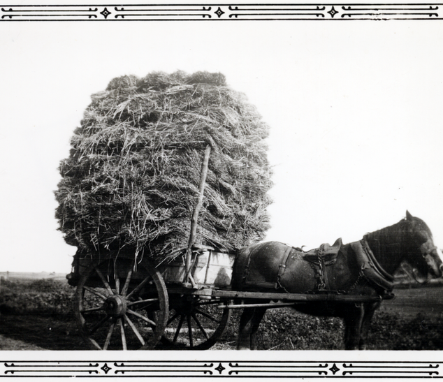 Cart load of hay or flax Picture70.png