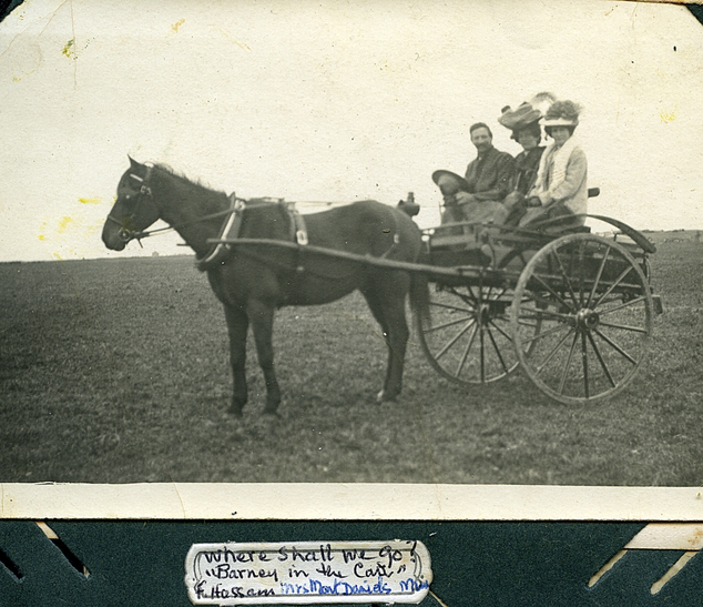 Barney in horse drawn cart Picture110.pn