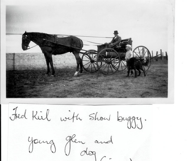 Fred Kiel with Show buggy Young Glen and