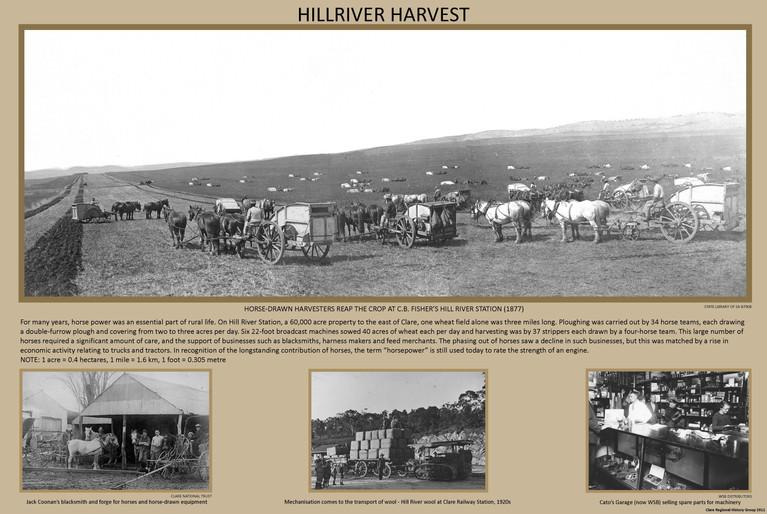 11. Hill River Harvest Poster