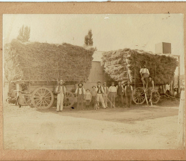Two loads of hay on drays Picture38