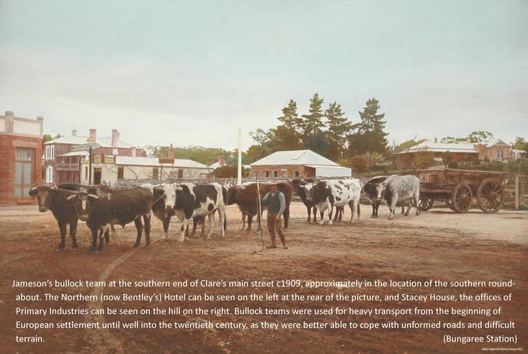 14. Jameson's Bullock Team Poster