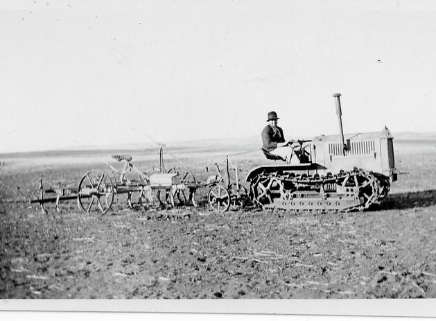 Cat with plough c 1940