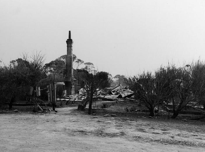 Bushfire Destruction 1965.jpg