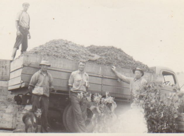 Truck load with workers Picture37.png