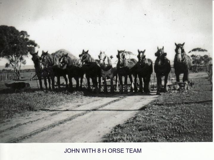john with 8 horse team.jpg