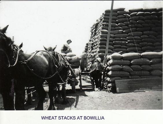 Wheat stacks at Bowillia.jpg