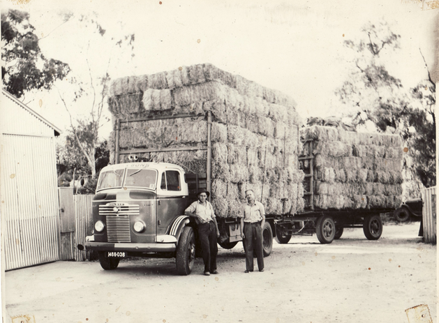 Truck and trailer carrying bales of hay
