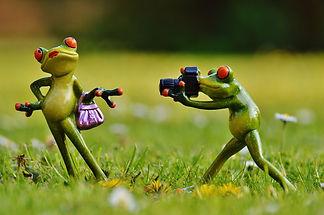 diseño web, fotografia,negocios,free lance, independiente,marketing,promocionar,web,diseño,propio,sexo,trabajo,exito,dinero,barato,pareja,lograr,galeria,curriculum,photobook,empresa,catalogo,google,aprender,wix,redes sociales,facebook,foto,perfil,imagen,dinero,profesional,modelo,
