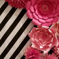 Hello Divine Pink Paper Flower Backdrops
