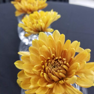 Hello Divine Yellow Flower Table Pieces