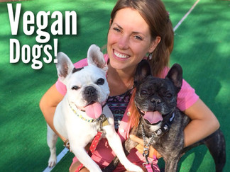 Vegan Dogs: Healing on Plant-Based Foods + Dog Food Recipe!