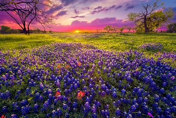 Sunrise in the Texas Hill Country.jpg