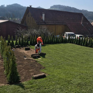Garten 6.jpg