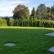 Garten 4.jpg