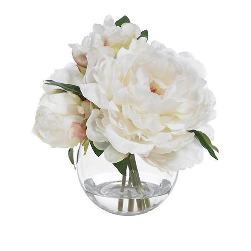Soft Peony Blooms
