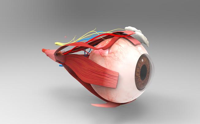Eye Ball .jpg