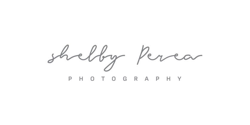 SP Photography simple logo 60% black-01.