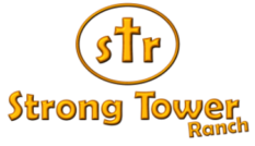 STR-Logo-e1496508876627.png