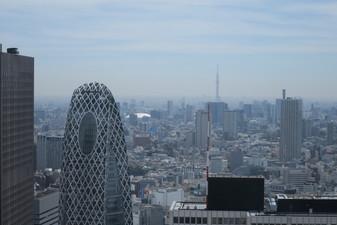Shibuya Skyline - Tokyo, Japan