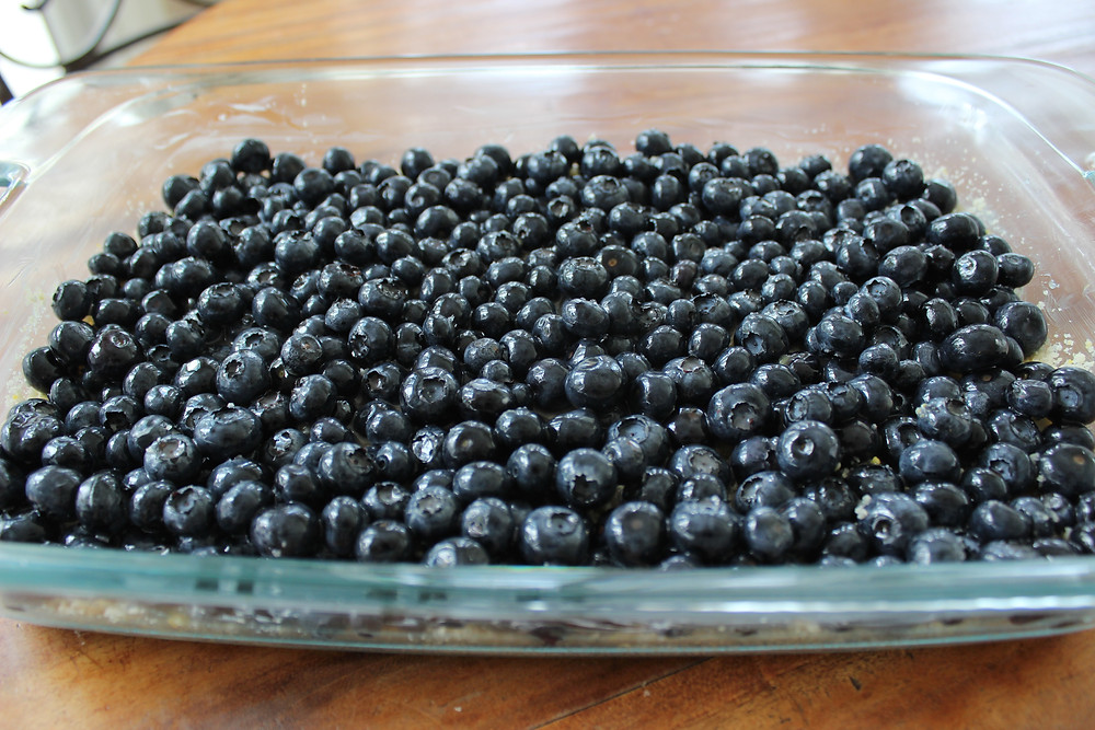 layer of blueberries