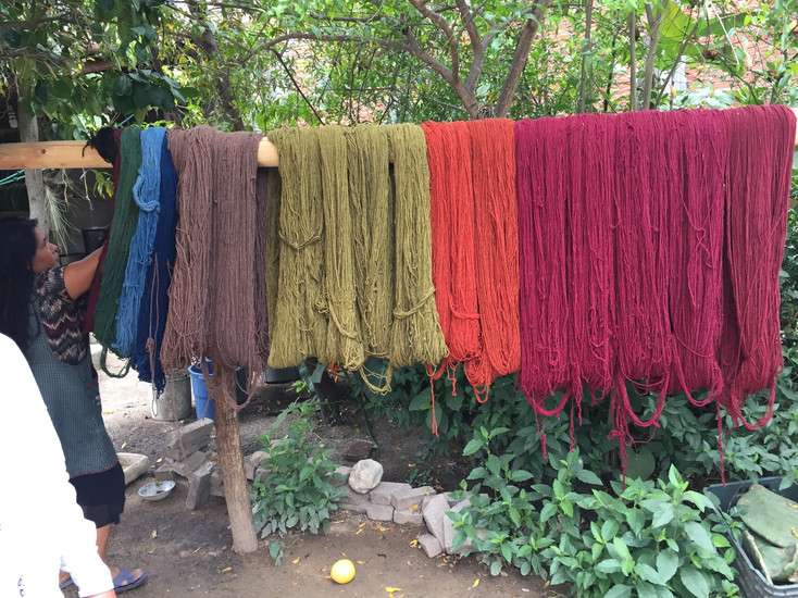 COCHINEAL DYEING