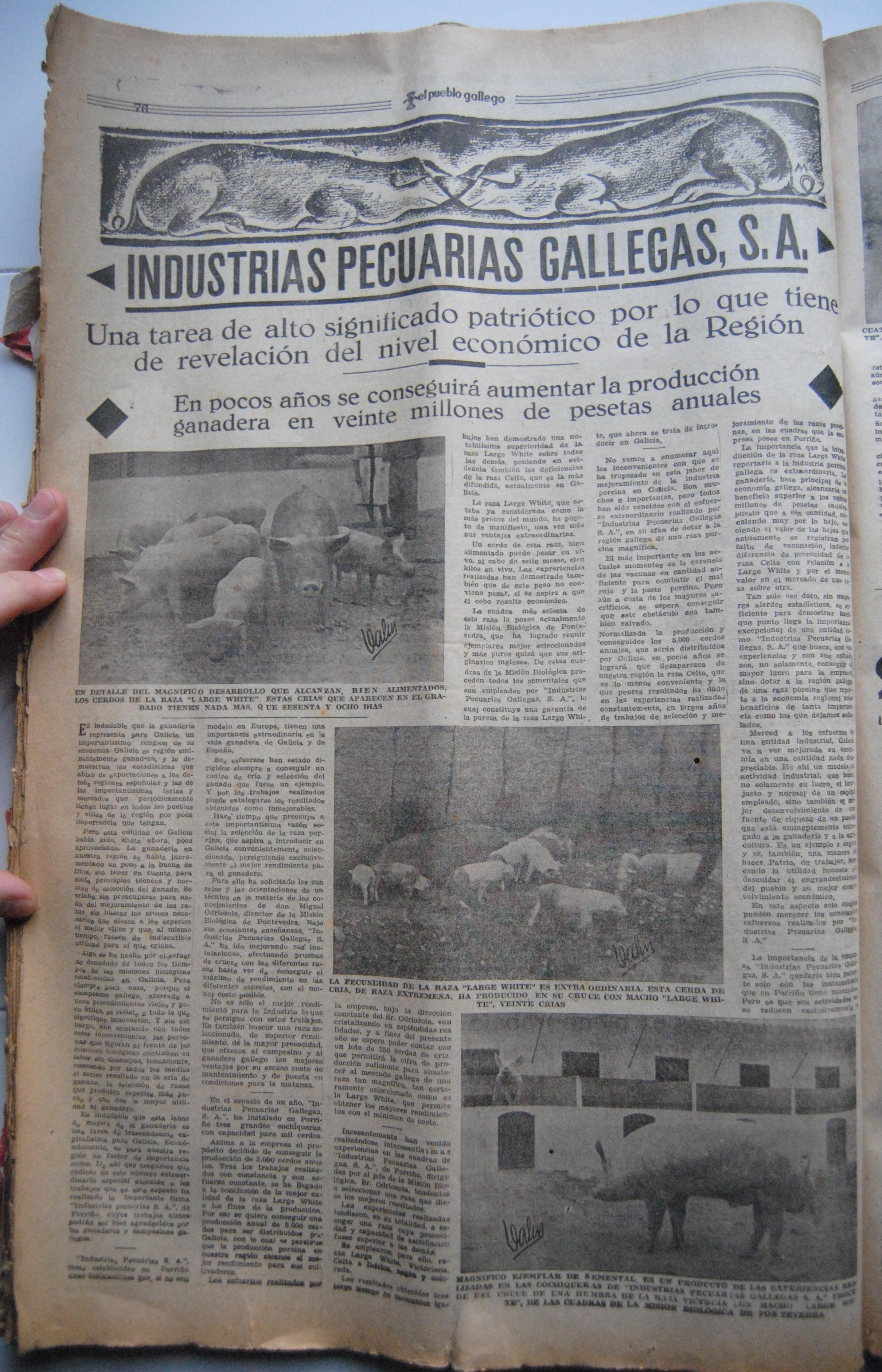 Industrias Pecuarias
