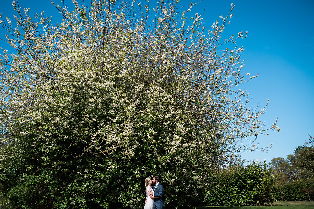 newly married couple kissing under tree