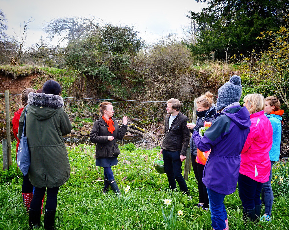 Alison Leading a foraging class