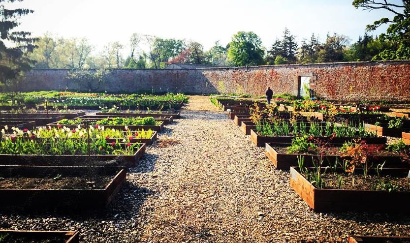 Colstoun Walled Garden