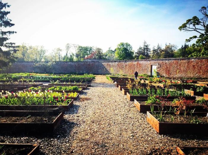 Colstoun's formal walled garden