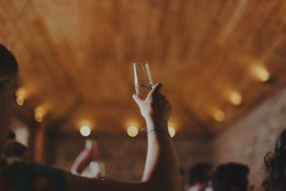 Cheers! wedding celebration in The Coach House - photo by Anna Urban