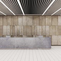 Vstup Nové budovy Národního muzea