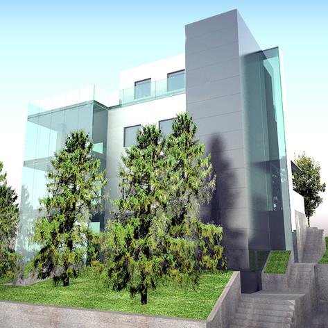 Vila reconstruction